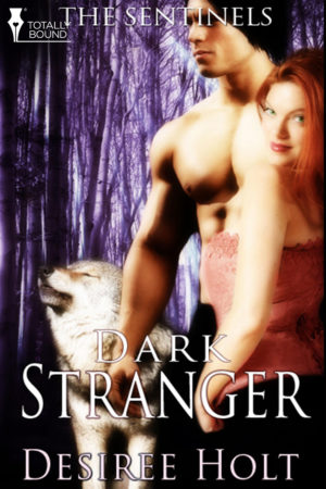 Dark Stranger Cover Art