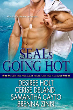SEALs Going Hot Anthology Cover Art